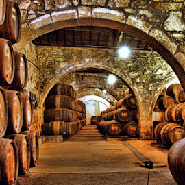 Port wine cellars by Antonio Amen - Buildings & Architecture Other Interior ( port, wine, gaia, barrels, cellars, douro, porto )