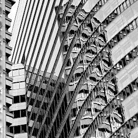 High by Dragana Jankovic - Buildings & Architecture Office Buildings & Hotels ( office buildings, b & w, architecture, city,  )