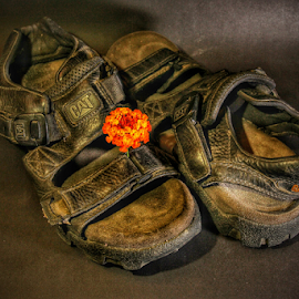 abandon by Hasnain Rizvi - Artistic Objects Clothing & Accessories ( shoes, flower )