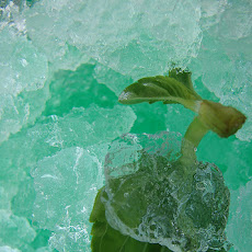 Basil and Lime Granita