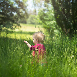 discovery by Rebecca Koch - People Family ( child, grassy, sunner, fun, portrait )