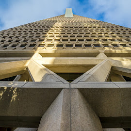 TRANSAMERICA BLDG by Julio Gonzalez - Buildings & Architecture Office Buildings & Hotels