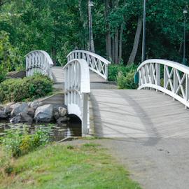 The bridge by Anitta Lieko - Buildings & Architecture Bridges & Suspended Structures ( nature, path, landscape )