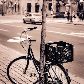 Every photograph has it's own story  by Luli Busedra - City,  Street & Park  Street Scenes ( bike, street, ottawa )