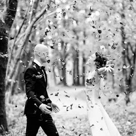 Rain by Andreas Anderson - Wedding Bride & Groom ( autumn, black and white, wedding, fall, bride and groom, woods, portrait,  )