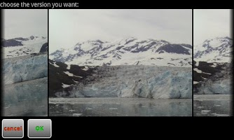 Screenshot of PerfectShot