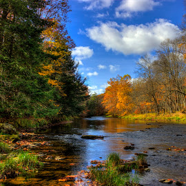 Northwestern Pennsylvania Autumn by Phil Deets - Landscapes Forests ( clouds, stream, autumn, creek, pennsylvania )