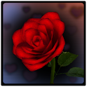 3D Rose Bouquet LWP Free icon