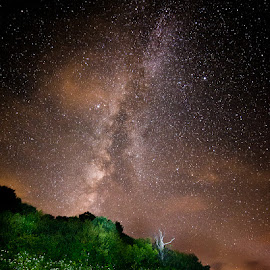 by Joshua Williams - Landscapes Starscapes
