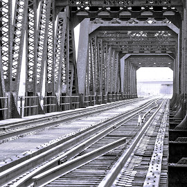 Train Bridge by Nathan D - Buildings & Architecture Bridges & Suspended Structures ( latice, b&w, csx, trussle, truss, train, bridge, steel )