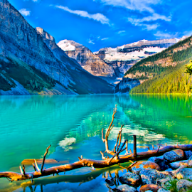 Lake Louise by Steve Rogers - Landscapes Waterscapes ( lake louise, turquoise, alberta, canada, lake )
