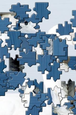 Hippo Jigsaw Puzzle