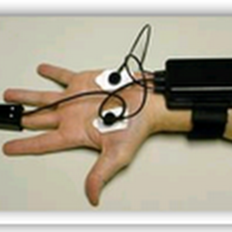 Hand-held lie detector