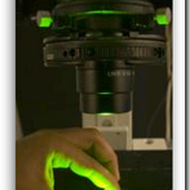 New electrostatic-based DNA microarray technique could revolutionize medical diagnostics – personalized medicine