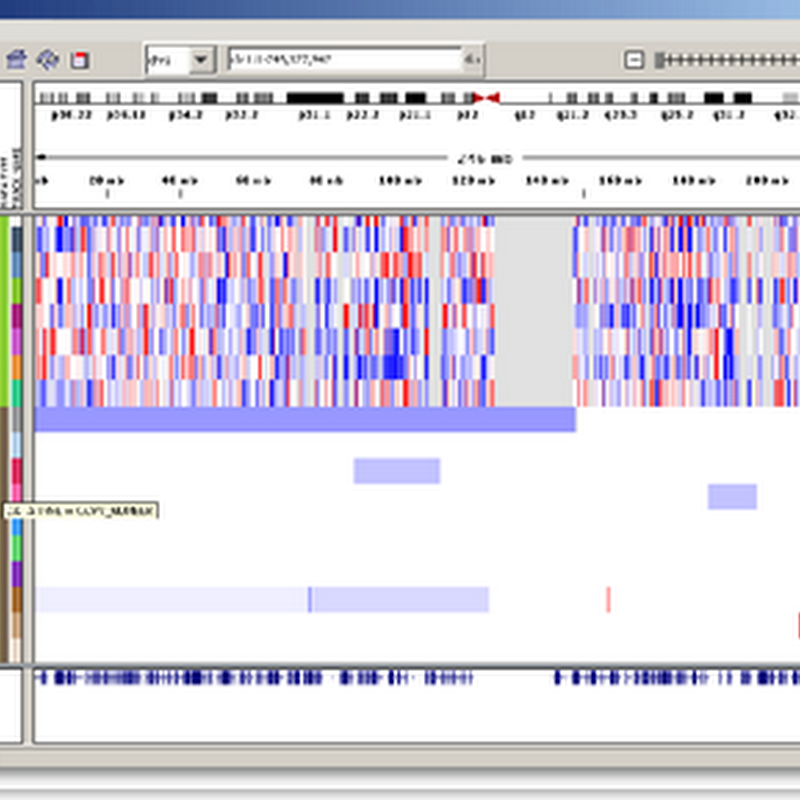 Broad Institute Makes Genomics Data Viewer Public - Free software download...