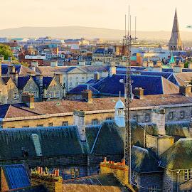 Rooftops of Dublin by Daniel Dudek-Corrigan - City,  Street & Park  Skylines ( roof, skyline, ireland, dublin, buildings, architecture, rooftops )