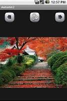 Screenshot of Autumn Wallpaper