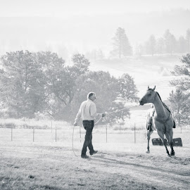 Training Day by Jeremy Solesbee - Animals Horses ( picasa, montana, facebook, fiona, trip, road, kristen )