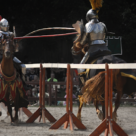 Jousting Knights Contact by Julie Berglund - Sports & Fitness Other Sports ( horses, knights, jousting, horse, medieval, knight, joust,  )