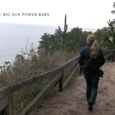 Big Sur Power Bars