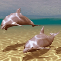 Dolphins Under Sea Live Wallpa icon