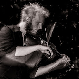violin by Gianluca Morini - People Musicians & Entertainers