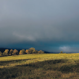 by Jonathan Drezner - Landscapes Prairies, Meadows & Fields