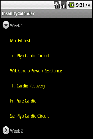 Insanity Workout Schedule PRO