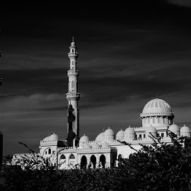 The B&W Competition...Day Nr. 2 out of 5: The  by Manu Schwingel - Buildings & Architecture Public & Historical