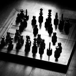 Black and White Chess by Alexander Dedelyanov - Novices Only Objects & Still Life ( monochrome, chess, white, light, black, and )