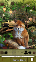 Screenshot of Hidden Object - The Fox Says