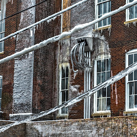 iced over by Fred Faulkner - City,  Street & Park  Neighborhoods ( lincoln park, devastation, ice, aftermath, icecicle, chicago, mulligan school, fire )