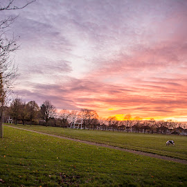 Sunset in Beaumont, Dublin by Rober Soares - Nature Up Close Gardens & Produce ( ireland, dublin, sunset )