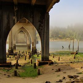 Under Bridge in fog by Lori Pagel - Buildings & Architecture Bridges & Suspended Structures ( water, architecture, pilings, sunlight, coastal, coast, sun, fog, siuslaw river, sunset, trees, bridge, wet, river )