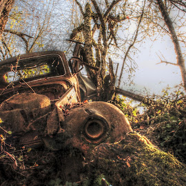 Crashed and Abandoned by Sarah Peters - Transportation Automobiles ( car, old car, hdr, forgotten, crash, abandoned )