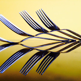 Forks and reflection by Janette Ho - Artistic Objects Other Objects