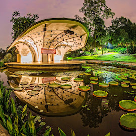Symphony Stage @ Symphony Lake by Patrick Lim - Buildings & Architecture Other Exteriors ( singapore botanic gardens, symphony lake, gardens, botanic, water lilies )
