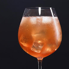 Sparkling Campari Cocktail Recipe