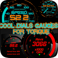 App Torque Free 2 Themes OBD 2 apk for kindle fire