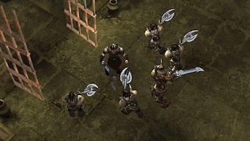Screenshot of Dungeons Riot (Action RPG)