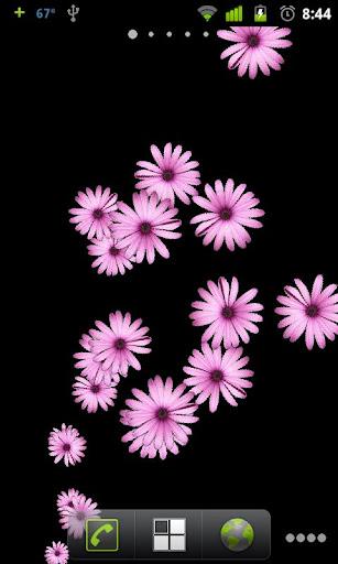 Pink Flower Live Wallpaper