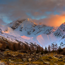 Monte Disgrazia by Roberto Melotti - Landscapes Mountains & Hills ( bregaglia range, roberto melotti, italian, mountain, mount, peak, sunset, nikon d810, val masino, italy, monte disgrazia, alps )