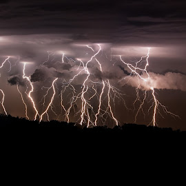 by Gary Tindale - Landscapes Weather ( lightning, perth, australia, weather, night, wa, storm,  )