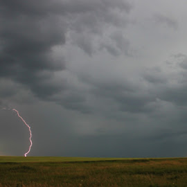 Prairie Lightning by Shelly Priest - Landscapes Weather ( clouds, lightning, sky, dark, storm, prairie,  )