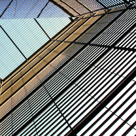 Structure by Stephanie Veronique - Buildings & Architecture Other Interior ( structure, interirior, buildings, lines, architecture )