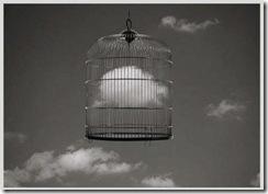 Cloud inside a cage