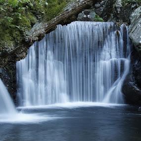 Senhora da Piedade by Nuno Miguel Valente - Landscapes Waterscapes ( senhora da piedade, serra da lousã, waterfall, cascata )