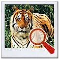 Game Find It 2™ Find the Difference APK for Kindle