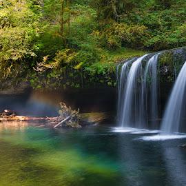 Magical by Gina Jerabek Dasher - Landscapes Waterscapes ( oregon, upper butte falls, falls, scotts mills, obiquia )