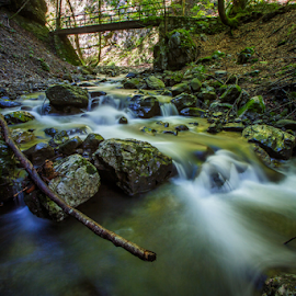 Creek Jasle - Zeleni vir by Stanislav Horacek - Landscapes Waterscapes